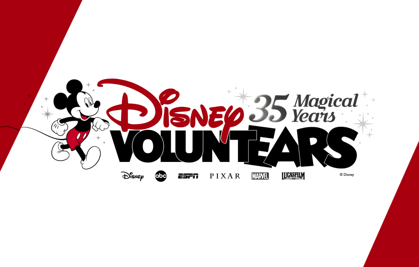 Voluntariado Disney